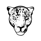 Head of Jaguar