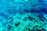 Beautiful seabed background