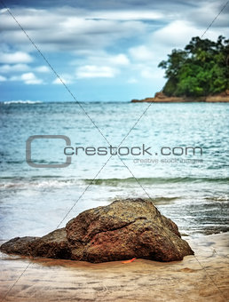 Beautiful beach landscape