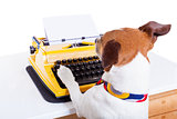 secretary typewriter  dog