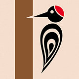 Woodpecker icon
