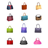 Women s fashion collection of bags.