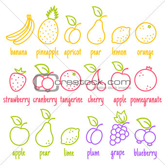 flat icons of a fruits
