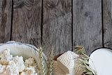 Dairy products and grains background