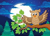 Owl topic image 3
