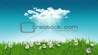 3D daisies in grass with cloud
