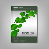 Brochures book with green leaves template