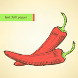 Sketch chilli pepper in vintage style