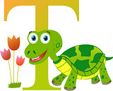 Alphabet for children: letter T is for Turtle