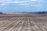 Empty not plowed field after winter