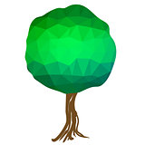 Green Polygonal Tree