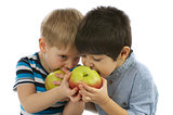 Two Boys Eating Apples