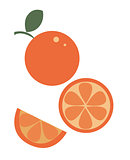 slice of orange juice vector.