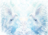 Dove in ornamental winter snowflakes, white radiant holy flying