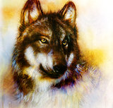 Wolf painting, color  background on paper , multicolor illustra