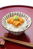 sea urchin roe on rice, japanese food