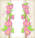 Floral card with peach flowers
