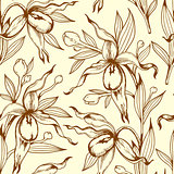 Vintage seamless pattern with orchids