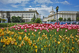 Spring Landscape of Square kniaz Alexander first