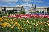 Spring Landscape of Square kniaz Alexander first