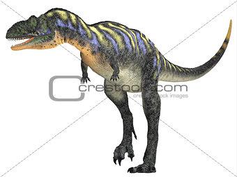 Aucasaurus over White