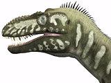 Bistahieversor Dinosaur Head
