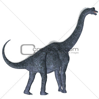 Brachiosaurus over White