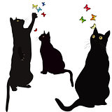Black cats silhouettes and colorful butterlies