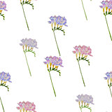 Seamless pattern with freesia flowers-03