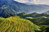 rice terraced fields Wengjia longji Longsheng Hunan China