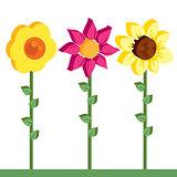 flowers 3d pattern