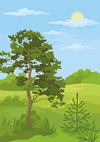 Summer landscape with trees and blue sky