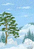Winter Christmas Landscape with Trees and Snow