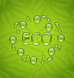 Eco friendly background with water drops on fresh green leaves t