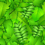 Seamless with green spring leaves.