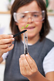 Young boy studying plant evolution in science class