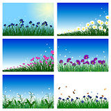 Meadow color background set
