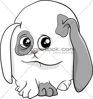 baby bunny cartoon illustration