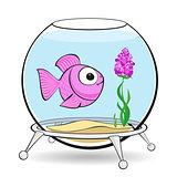 pink fish in fishbowl
