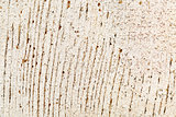 grunge white painted barn wood texture