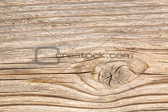 background texture of cedar wood