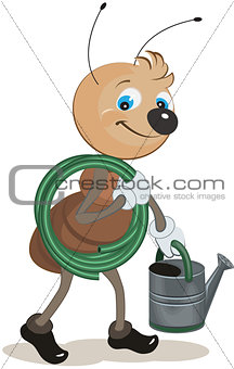 Ant gardener carries the hose and watering can