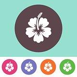 Vector hibiscus silhouette icon