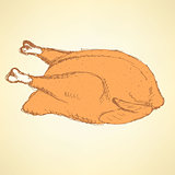 Sketch roasted turkey in vintage style