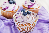 Set of tasty blueberry cupcakes