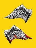Hand drawn angel wings vector