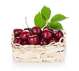 Ripe cherries basket
