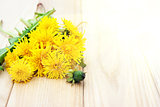 Dandelion flowers on the wooden background