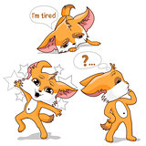 Orange fox. Funny animal