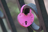 Pink wedding hinged lock lovers hanging on the fence of the brid